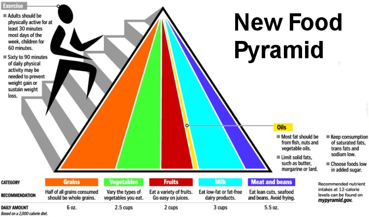 benefits of my pyramid planner The food pyramid is the us department of agriculture's updated guide to better nutrition healthy eating is a snap with its new approach to the food groups.