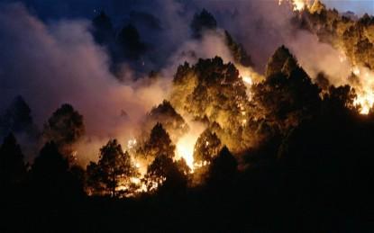 forestfires_2359259b