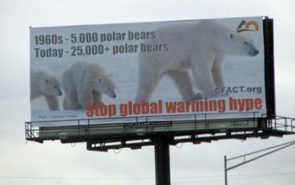 cfact_polar_bear_billboard
