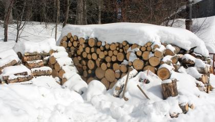 Hasha-wood-pile