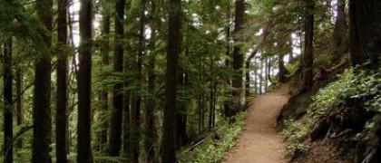 Rampart-Ridge-Trail-2754137063_fc8ff44f7d-e1274916807446