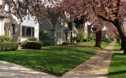 suburbs2