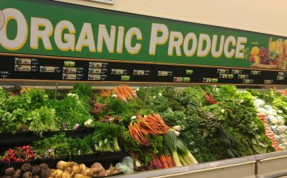 Organic-Produce-in-Grocery-Store-Photo