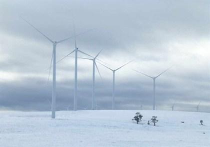 taral_wind_snow560_497x350